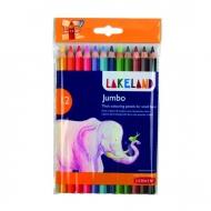 Набор цветных карандашей Derwent Lakeland Jubmo 12 цветов, в блистере