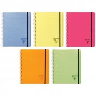 """Бизнес-тетрадь Clairefontaine """"Proactiv'Book"""", А5+, 90 г/м2, на гребне, клетка, 90 л., обложка пластик"""