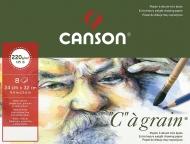 Папка с бумагой для графики Canson С 220г/кв.м 29.7*42см среднее зерно 8 листов