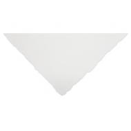 Бумага для акварели Winsor&Newton Professional 300г хлопок, 56*76см Фин 10л
