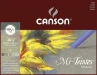 """Альбом для пастели Canson Mi-Teintes 5 """"серых"""" цветов 160г/кв.м 32*41см 30листов склейка"""