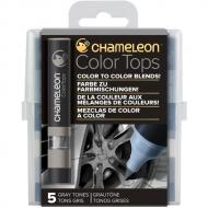 Набор цветовых блендеров Chameleon Gray Tones, серые тона, 5 шт