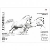 Бумага для пастели Палаццо Лилия Холдинг, 10 листов 500*700 мм, 160 г/м2, белоснежная