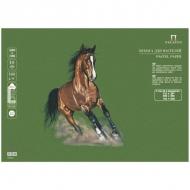 Бумага для пастели Палаццо Лилия Холдинг, 10 листов 500*700 мм, 160 г/м2, темные джунгли