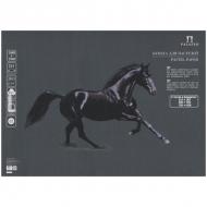 Бумага для пастели Палаццо Лилия Холдинг, 10 листов 500*700 мм, 160 г/м2, графит