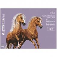 Бумага для пастели Палаццо Лилия Холдинг, 10 листов 500*700 мм, 160 г/м2, темно-розовая