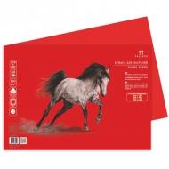 Бумага для пастели Палаццо Лилия Холдинг, 10 листов 500*700 мм, 160 г/м2, красная