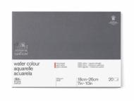 Блок для акварели Winsor&Newton Professional 300г, хлопок, 18*26см 20л Сатин