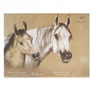 """Планшет """"Нежность"""" Лилия Холдинг, крафт-бумага для пастели, угля, графита, 200 г/кв.м, А2, 20 листов"""