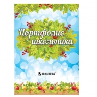 Листы-вкладыши для портфолио школьника, 14 разделов, 16 листов, Окружающий мир, Brauberg, 126896