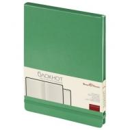 Бизнес-Блокнот А5, 100 л., твердая обложка, балакрон, открытие вверх, Bruno Visconti, Зеленый, 3-103/03
