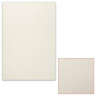 Картон белый грунтованный для масляной живописи, 35х50 см, односторонний, толщина 0,9 мм, масляный грунт, упаковка 5 листов