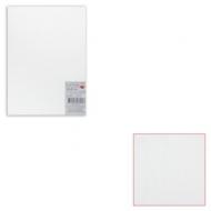 Картон белый грунтованный для живописи, 25х35 см, двусторонний, толщина 2 мм, акриловый грунт, упаковка 10 листов